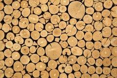 Texture of cut timber logs Stock Photos