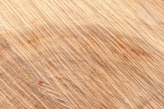 Wooden board with snub. Texture of a cut tree trunk close-up. Structure of a wooden surface Stock Images