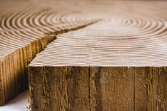 Texture of cut tree Stock Photography