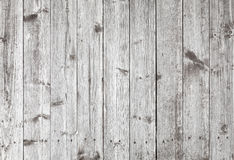Texture détaillée de fond de vieux mur en bois gris Photographie stock libre de droits