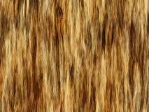 Texture d'écorce de Brown photographie stock libre de droits