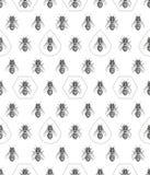 Texture d'abeilles Configuration sans joint Illustration graphique réaliste Fond Photos stock