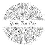 Texture d'agrumes Cadre de croquis Crayon lecteur d'encre Photos libres de droits