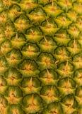 Texture d'ananas Images libres de droits