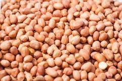 Texture d'arachide Photos stock