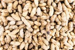 Texture d'arachide d'ébullition Photographie stock