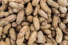 Texture d'arachide d'ébullition Images libres de droits