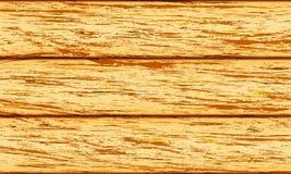 Texture d'arbre de fond Image stock