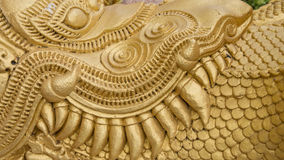 Texture d'or de dragon Images stock