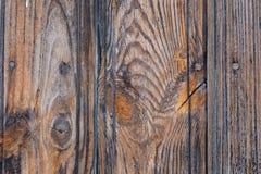 Texture d'or en bois de Brown Photo libre de droits