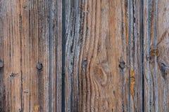 Texture d'or en bois de Brown Photo stock
