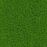 Texture d'herbe Image stock