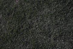 Texture d'herbe Photo stock