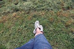 Texture d'herbe avec l'homme dans des espadrilles Photographie stock