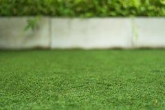 Texture d'herbe avec planter le fond de pot Photo libre de droits