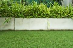 Texture d'herbe avec planter le fond de pot Photos libres de droits