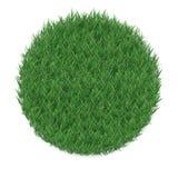 Texture d'herbe dans une forme de cercle, d'isolement sur le fond blanc Photos stock