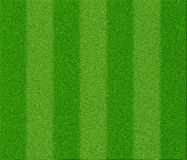 Texture d'herbe du football Photos stock