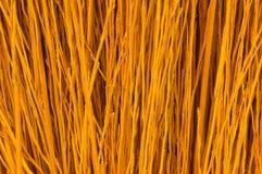 Texture d'herbe sèche Photo stock