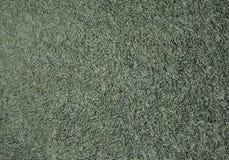 Texture d'herbe verte Fond vert d'herbe du football photographie stock libre de droits