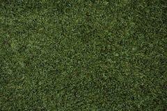 Texture d'herbe verte Fond vert d'herbe du football photographie stock