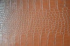 Texture d'imitation de peau de crocodile de Brown images libres de droits