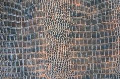 Texture d'imitation de peau de crocodile de Brown photos libres de droits