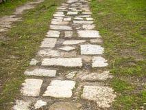Texture d'un plancher de trottoir avec de la mousse Photo stock