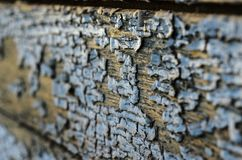 Texture d'un vieux conseil en bois avec la peinture d'épluchage Images libres de droits