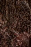 Texture d'une pierre Images stock