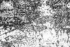 Texture d'une porte rouillée Images stock