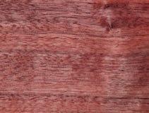 Texture d'une surface en bois d'acajou Placage en bois pour des meubles Photo libre de droits