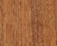 Texture d'une surface en bois d'un noyer américain Placage en bois pour le furnitur Photographie stock libre de droits