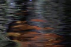 Texture of a dark autumn water Stock Photo