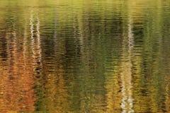 Texture of a dark autumn water Stock Photos