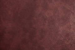 Texture of dark brown cowhide Stock Photos