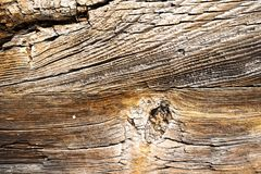 Texture of dark wood. natural background. Royalty Free Stock Image