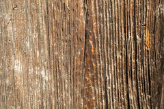 Texture of dark wood. natural background. Royalty Free Stock Photos