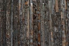 Texture de barrière de Pinewood images stock