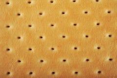 Texture de biscuit/biscuit Photos libres de droits