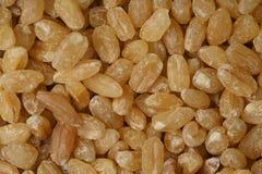 Texture de blé images libres de droits