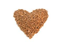 Texture de blé Photo stock
