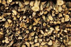 Texture de bois de chauffage, après le bois de sawing Photographie stock libre de droits