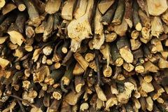 Texture de bois de chauffage, après le bois de sawing Photo libre de droits