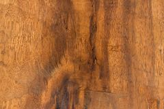 Texture de bois dur de Brown Image stock