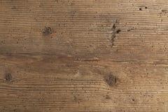 Texture de bois endommagé par termite Photographie stock libre de droits
