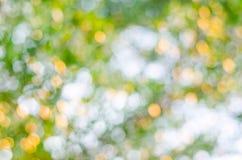 Texture de Bokeh ou fond verte, cercle de tache floue Photographie stock
