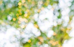 Texture de Bokeh ou fond verte, cercle de tache floue Photographie stock libre de droits
