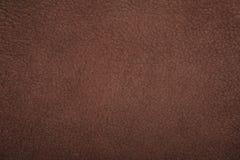 Texture de brun de lether de chamois Images libres de droits
