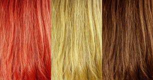 Texture de cheveu Images libres de droits